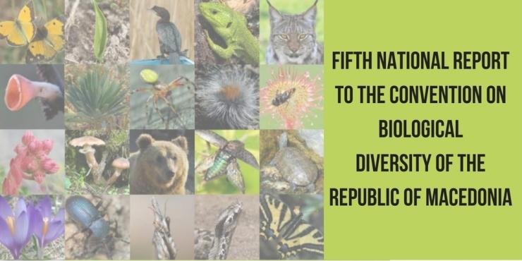 Fifth National CBD Report.jpg